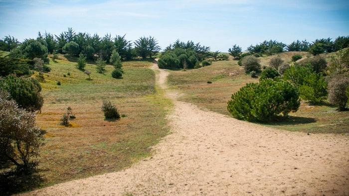 chemin avec accès direct plage Saint Jean de Monts