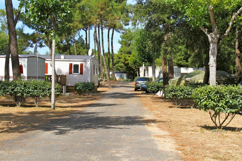 photo emplacements de camping cote plage a st jean de monts