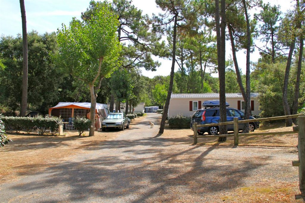 emplacements ombragés camping
