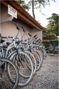 location de vélos au camping