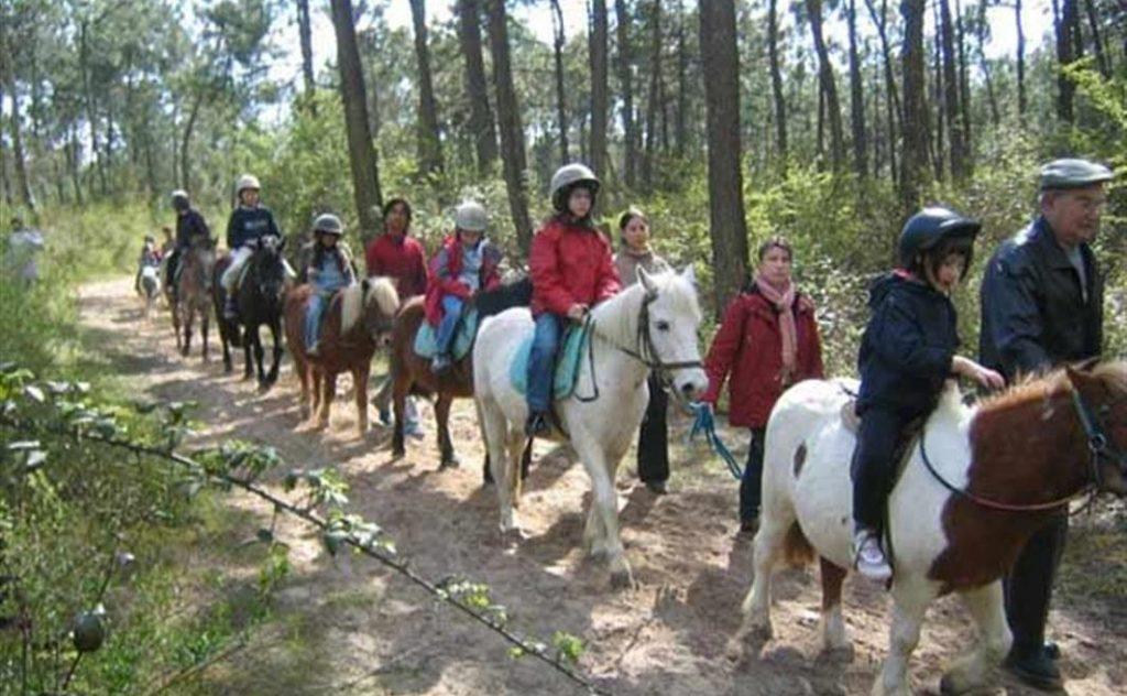 Camping proche d\'un centre équestre pour balades a poney
