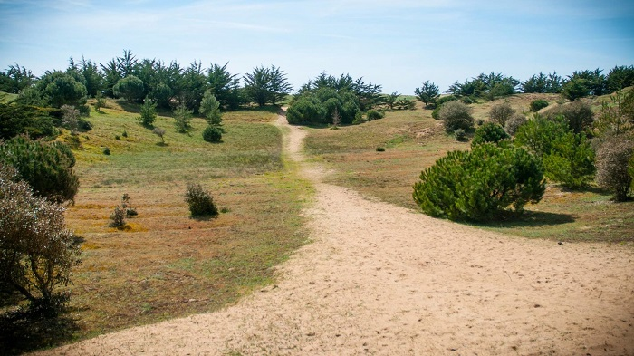 accès direct plage proche de st jean de monts